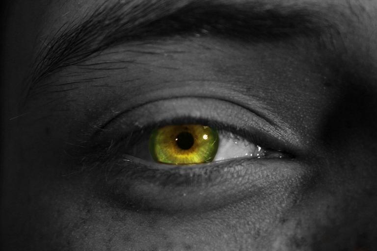 eye (1).jpg